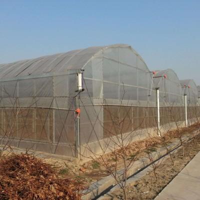 蔬菜大棚建设厂家 温室大棚价格  大棚骨架出售 养殖大棚